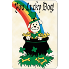 You Lucky Dog (St. Patricks Day)
