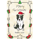 Border Collie, Christmas
