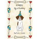 Brittany Spaniel, Happy Birthday