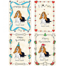 Basset Hound Breed Pack