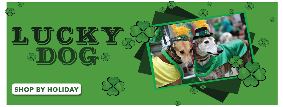 Lucky Dog - St Patrick's Day