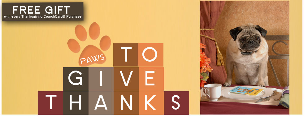 Paws to Give Thanks