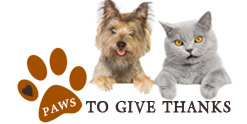 Paws to Give Thanks - we <3 our pets